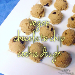 Sunwarrior Chocolate Chip Cookie Dough; Vegan Chocolate Chip Cookie Dough
